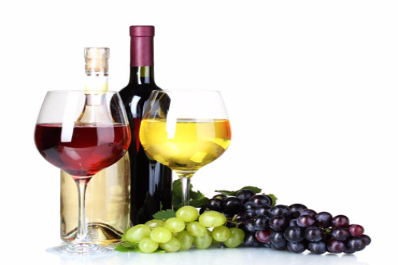 wijnen (1).jpg