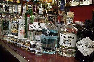 gin-tasting-hattersheim-36831.jpg